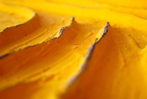 gialloMaxDETT2_web